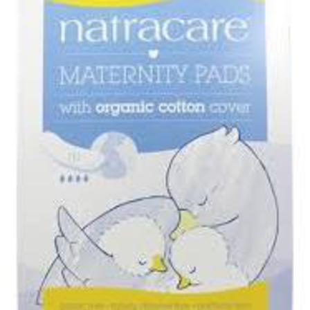 Natracare maternity pads x 10